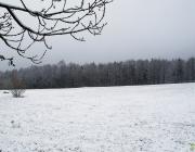 verschneite Landschaft