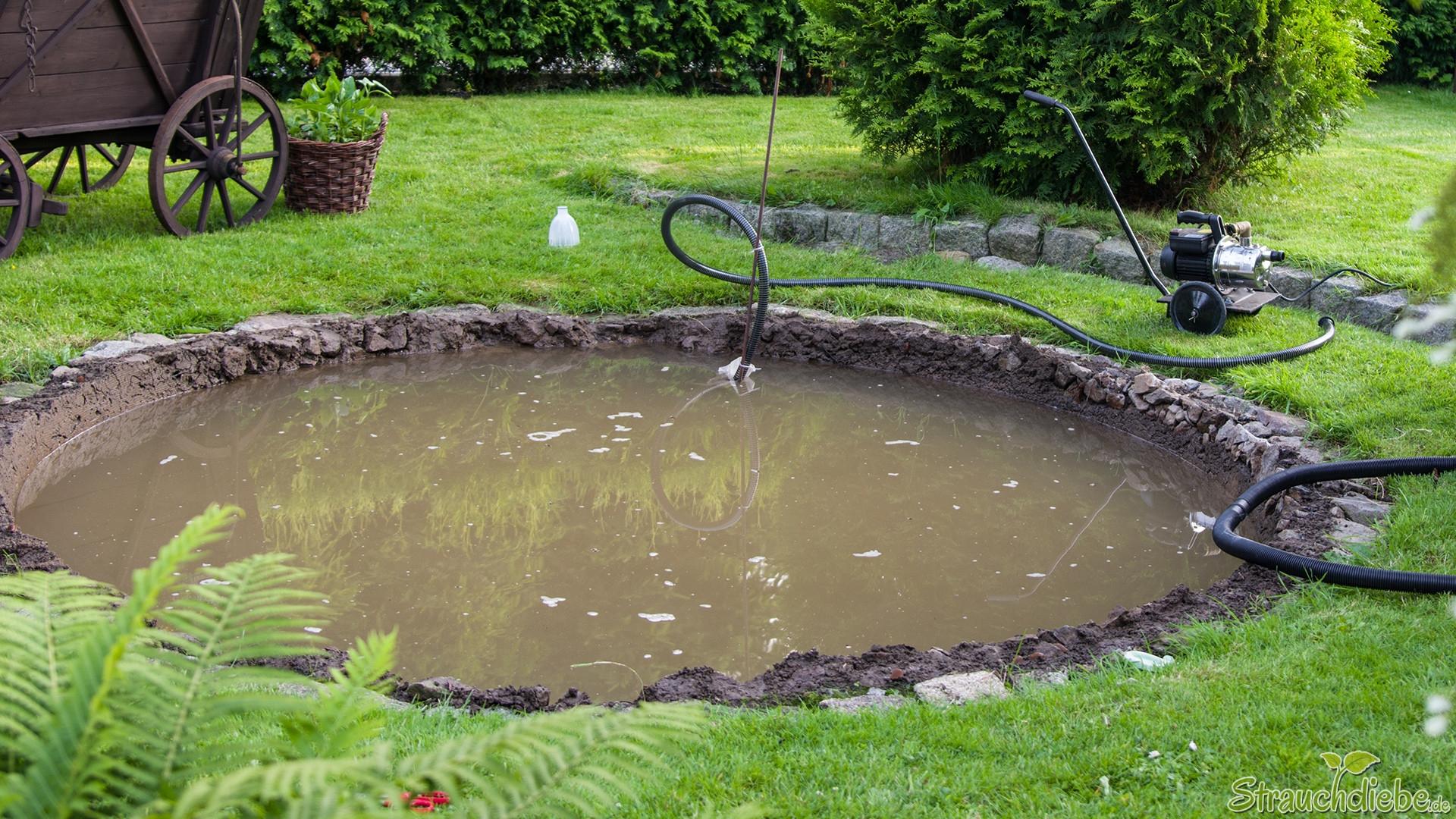 Neuer Gartenteich?