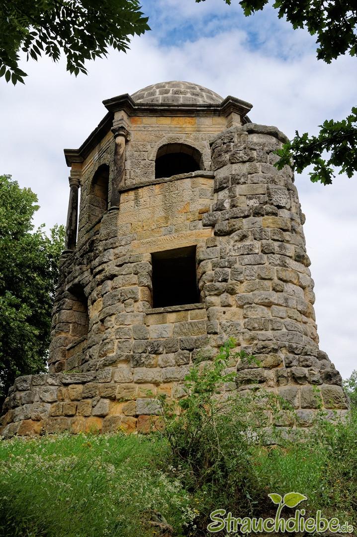Aussichtsturm Belvedere
