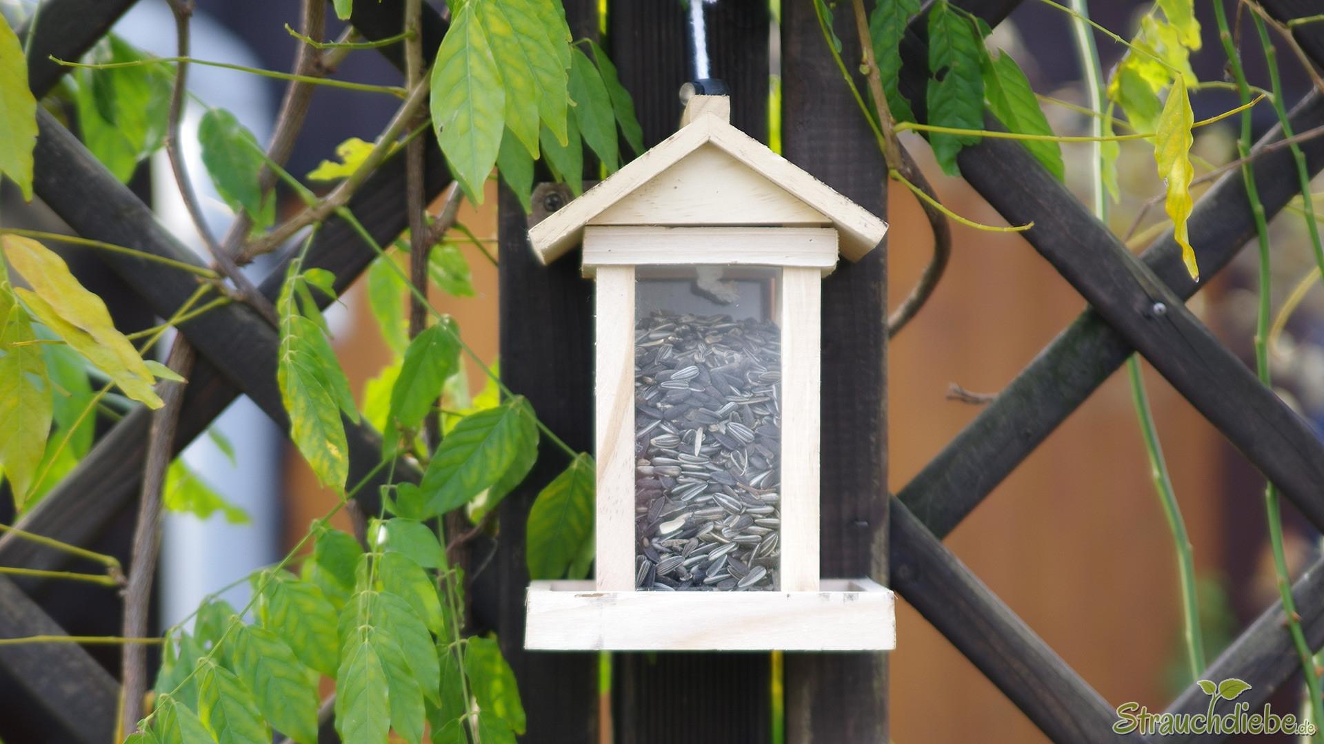 neues Vogelhäuschen