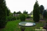 Rasen grünt wieder