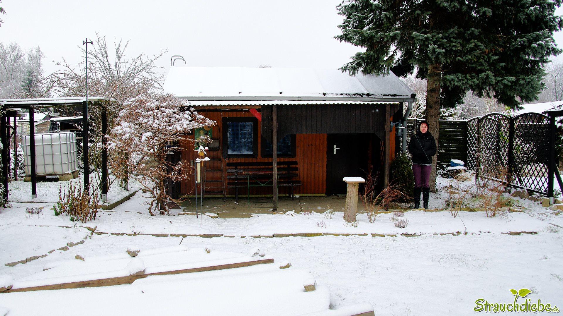 2014-01-1.jpg