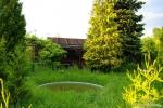 Gras vor der Laube 1.jpg