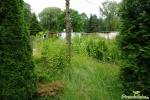 Blick zum Gartentor 1