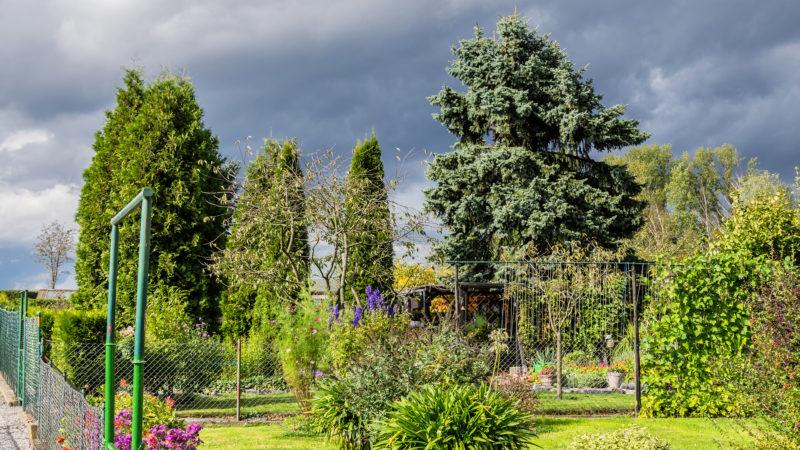 Dunkle Wolken über unserem Garten (02.10.16)