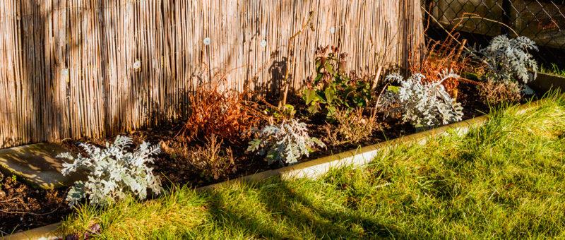 Kompostbeet im Dezember
