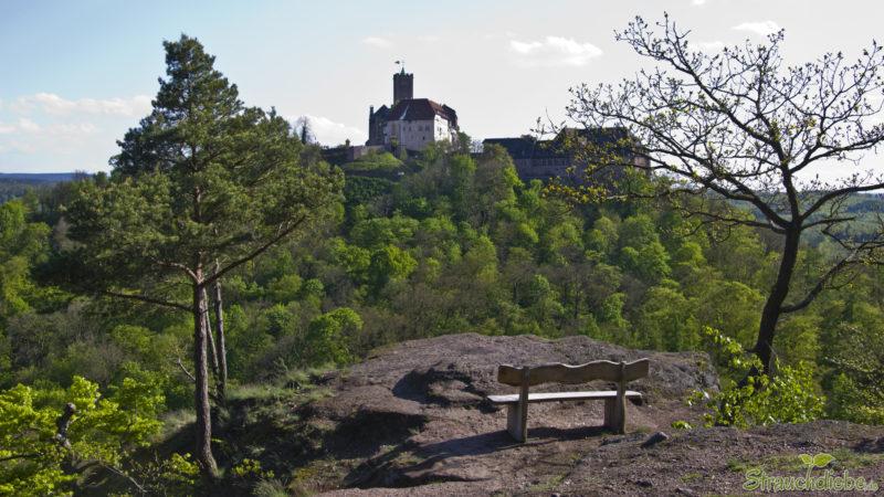 Blick vom Metilstein auf die Wartburg
