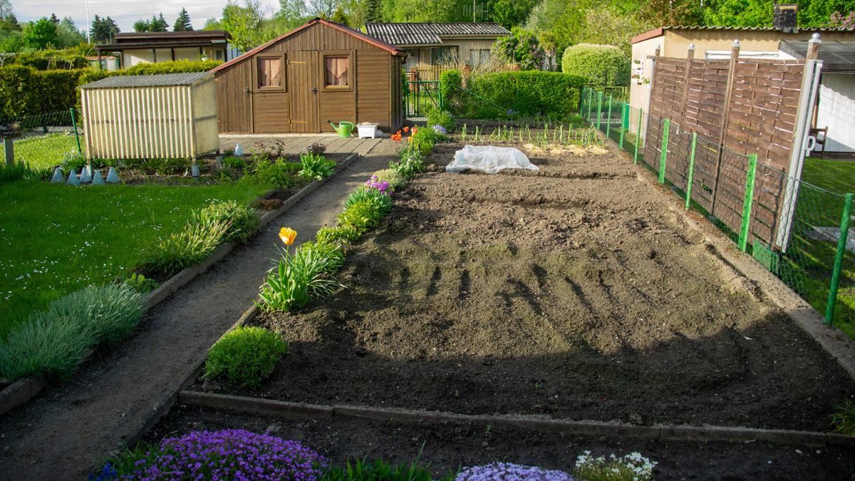 Beete im neuen Garten